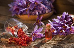 fleurs de safran avec filaments